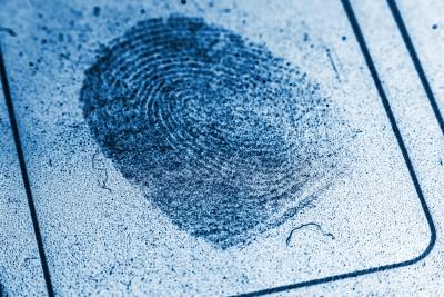 criminal record fingerprint